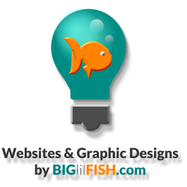 Big lil Fish webdesign packages prices for 2015